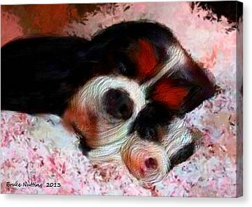 Puppy Love Canvas Print by Bruce Nutting
