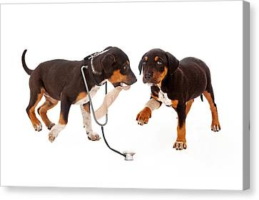 Puppy Veterinarian And Patient Canvas Print