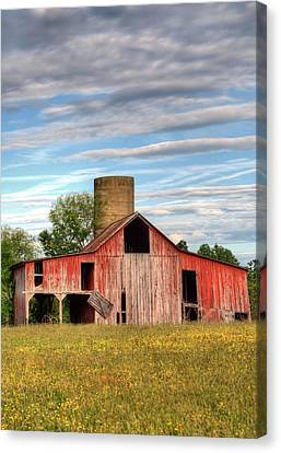 Pure Country II Canvas Print