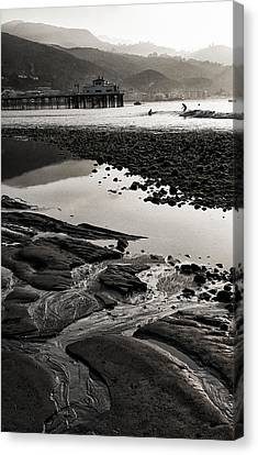 Purity Canvas Print by Ron Regalado
