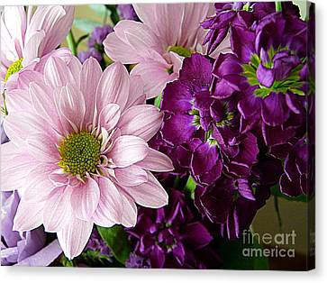 Purple And Pink Canvas Print