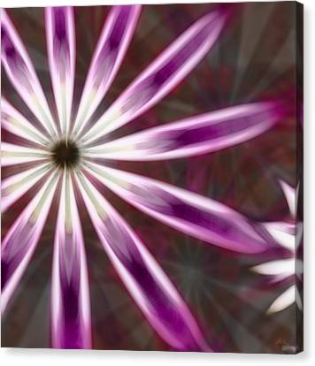 Purple And White Fractal Flower  Canvas Print by Gina Lee Manley