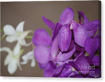 Canvas Print featuring the photograph Purple And White by George Mount