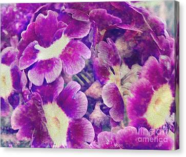 Purple And Yellow Pansies Canvas Print by Gena Weiser
