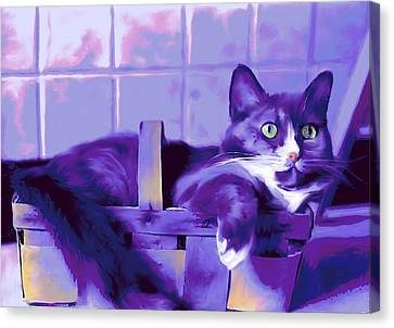 Purple Basket Case Canvas Print by Mary Armstrong