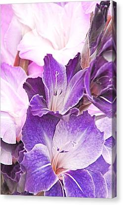 Purple Bouquet Gladiola Flowers Canvas Print by Jennie Marie Schell