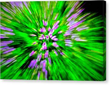 Purple Burst Canvas Print