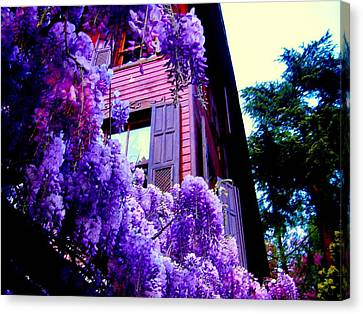 Canvas Print featuring the photograph Purple Cheer by Zafer Gurel