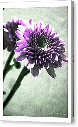 Purple Chrysanthemum Canvas Print by Michelle Frizzell-Thompson