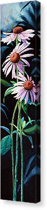 Purple Cone Flower 2 Canvas Print by Hanne Lore Koehler