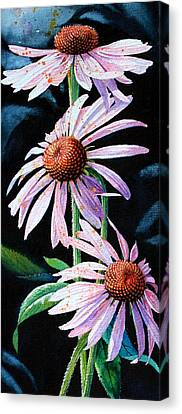 Purple Cone Flowers 1 Canvas Print by Hanne Lore Koehler