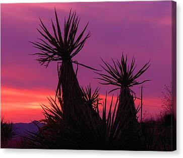 Purple Desert Canvas Print