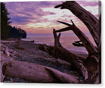 Canvas Print featuring the photograph Purple Dreams In Bc by Barbara St Jean