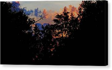 Canvas Print featuring the photograph Purple Ending by David  Norman