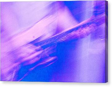 Canvas Print featuring the photograph Purple Haze by Alex Lapidus