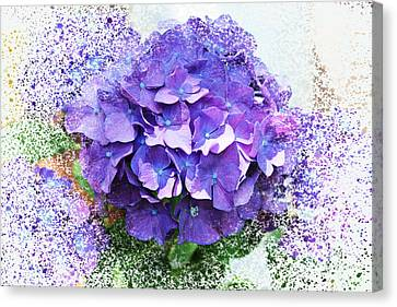 Purple Hydrangea Abstract Canvas Print by Judy Palkimas