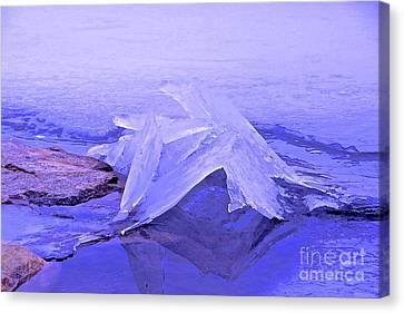 Canvas Print - Purple Ice by Randi Shenkman