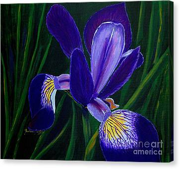 Purple Iris Canvas Print by Barbara Griffin