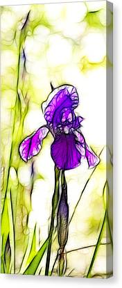 Purple Iris Batik Canvas Print by Kathy Clark