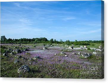 Canvas Print featuring the photograph Purple Landscape by Kennerth and Birgitta Kullman