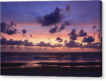 Purple Morning Canvas Print by Kimberly Oegerle