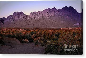 Purple Mountain Majesty Canvas Print