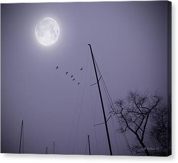 Purple Night Canvas Print by Brian Wallace