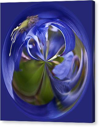 Purple Orb Canvas Print by Ron Roberts