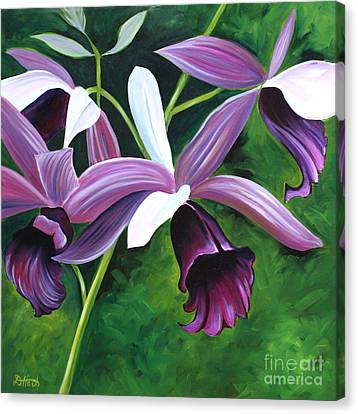Purple Orchid Canvas Print by Debbie Hart
