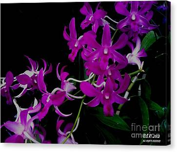 Purple Orchid Flower By Saribelle Rodriguez Canvas Print by Saribelle Rodriguez