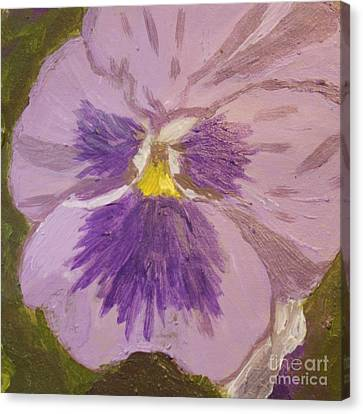 Purple Pansy 1 Canvas Print by Vicki Maheu