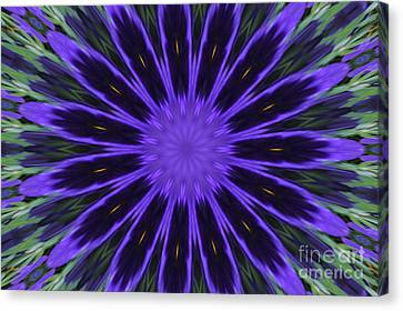 Purple Pansy Star Graphic Art Canvas Print