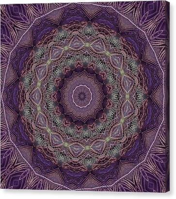 Purple Peacock Canvas Print by Yvette Pichette