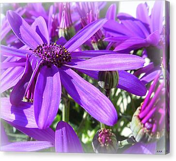Purple Petals Canvas Print