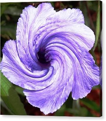 Purple Petunia Twirl Canvas Print