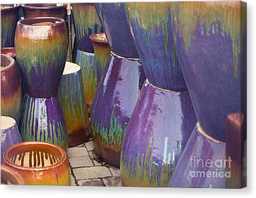 Purple Pots Canvas Print by Sally Simon