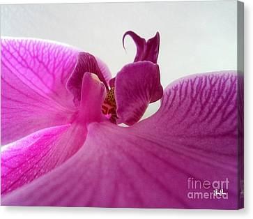 Purple Pretty Canvas Print by Geri Glavis