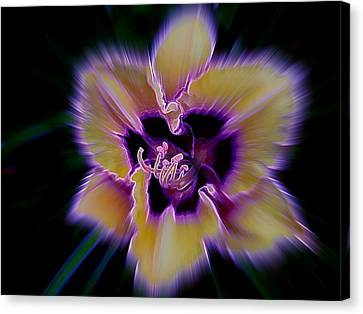Purple Radiance Canvas Print by Shirley Sirois