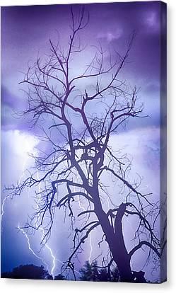 Lightening Canvas Print - Purple Rain by James BO  Insogna