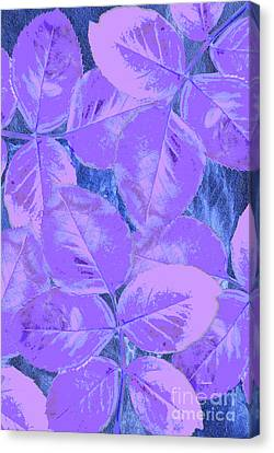 Purple Rose Clippings 1 Canvas Print