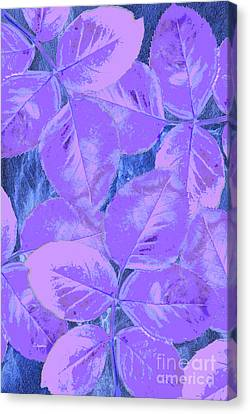 Purple Rose Clippings 2 Canvas Print