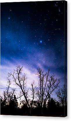 Purple Stars Canvas Print by Shelby  Young