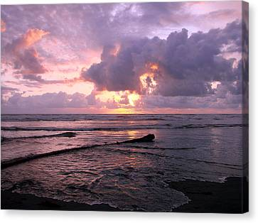 Canvas Print featuring the photograph Purple Pink Sunset by Athena Mckinzie