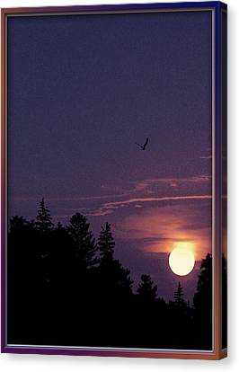 Canvas Print featuring the photograph Purple Sunset With Sea Gull by Peter v Quenter