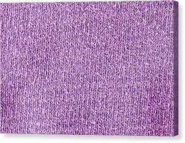 Purple Textile Canvas Print by Tom Gowanlock