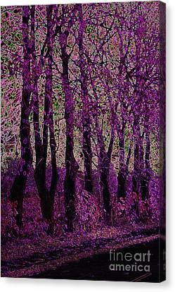 Purple Trees Canvas Print by Carol Lynch