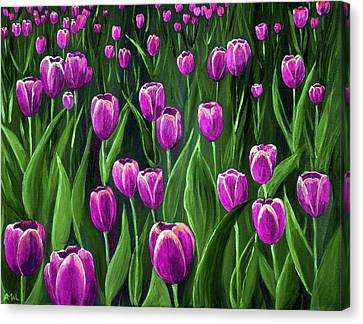 Purple Tulip Field Canvas Print