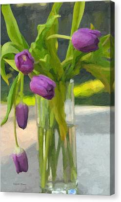 Purple Tulips Canvas Print by Kenny Francis