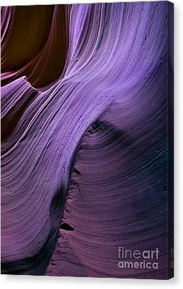 Purple Waves Canvas Print by Mike  Dawson