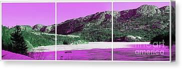 Purple Winter Triptych Canvas Print by Barbara Griffin